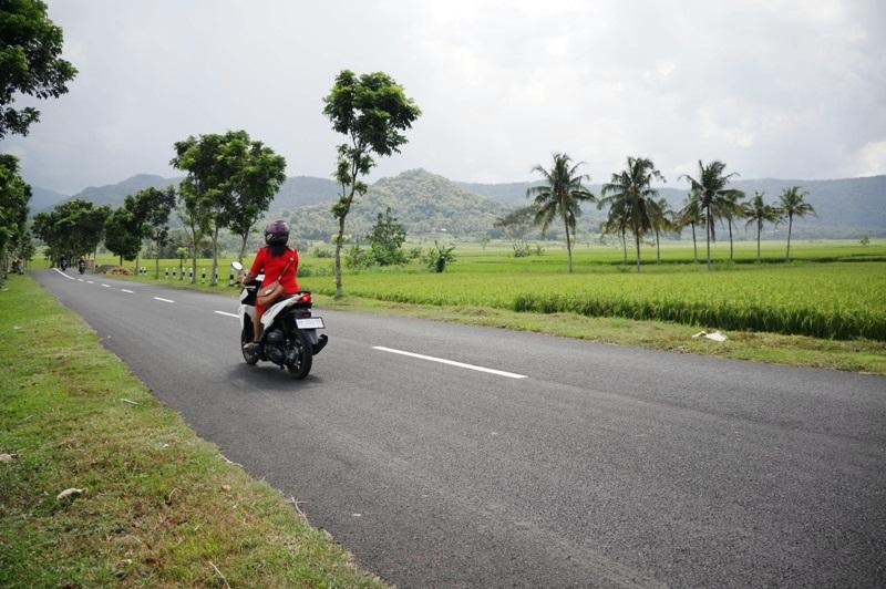 Jalan menuju di area persawahan Nanggulan, hijau dan sejuk (Dok. Riana Dewie)
