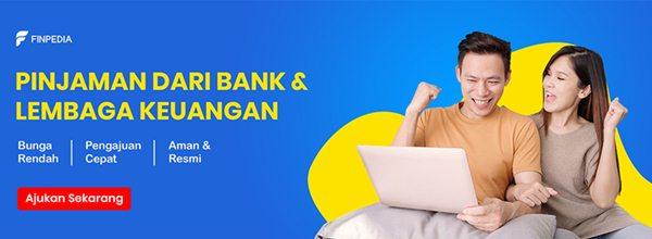 Pinjaman dari bank dan lembaga keuangan di Finpedia